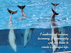 dolphin affirmations